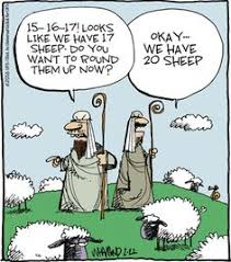 sheep-joke